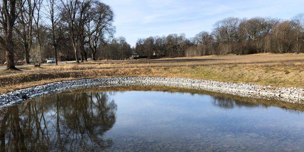 steninge_slottsby_dagvattendammar_landskapsarkitektur_4